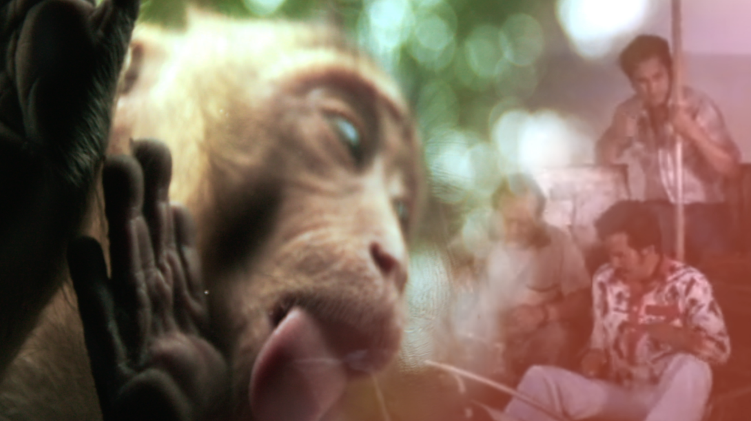 Monkey with tongue out and three men on the left