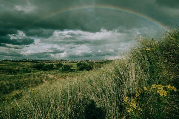 A rainbow over a meadow